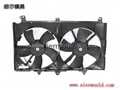 Radiator fan shroud mould