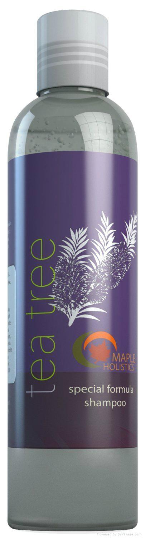 Tea Tree Oil Shampoo for Moderate Dandruff 1