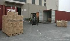 广州出口直航运新加波
