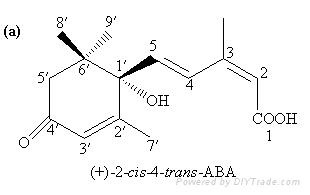 abscisic acid (purity:98%, CAS No.21293-29-8) 1
