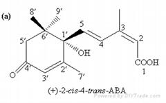 abscisic acid (purity:98%, CAS No.21293-29-8)