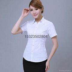 现货女式V领衬衫