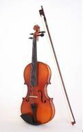 2015 Pm-V1 Violin Bow, Rosin, Case Hardwood Fingerboard 1
