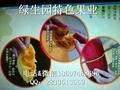 新型水果香如蜜种子 3