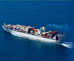 China International Ocean Freight
