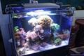 2016 DIY Dimmable Aquarium led lighting Full spectrum  2