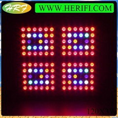 Herifi ZS005 120X3W led grow light Best Indoor Grow Lights for hydroponic system
