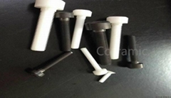 Zirconia ceramic screw