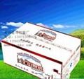 纯净水纸箱包装加工生产 3