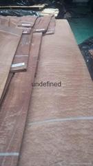 供應球紋沙比利木皮