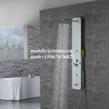 Glass shower panel with top shower 3