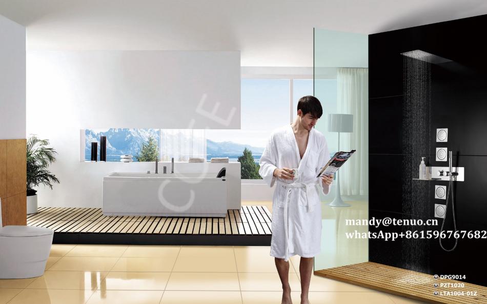Concealed shower spa system 1
