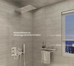 Concealed shower set