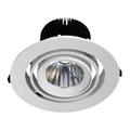 30W Round LED Downlight Spotlight