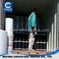 APP Ⅰ modified bitumen membrane