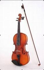 2015 violin