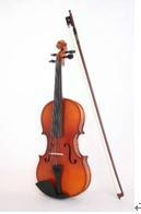 Violin PM-V1