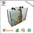 Nylon colors canvas shopping bag for