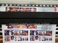 Polaris Printhead 3.2m 4 Polarias Print Head Wide format So  ent printer 4