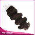 Virgin Malaysian Hair Silk Base Lace