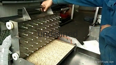 針吸式蔬菜穴盤育苗播種機