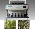Pixel 5000*3 CCD broad bean color sorter