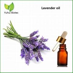 Lavender Oil, Lavender essential oil