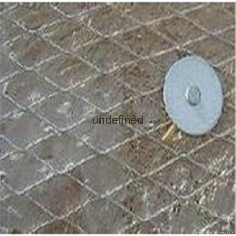 供應馳鑠抹牆鋼板網 2