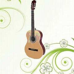 """wyj4539"""" classic guitar"""