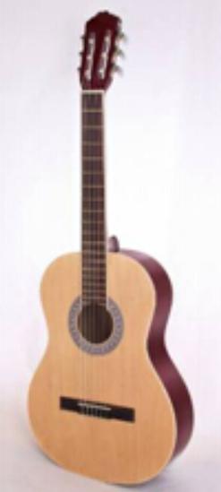ZXS-66-Classical Guitar for guitar beginners 1