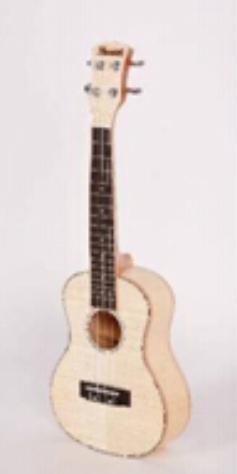 ZXS66-High-Grade ukulele 1
