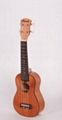 21'' ukulele ZXS-66