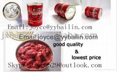 70g*50tins tomato paste export Afrika