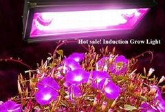Hydroponics Indoor Garden Magnectic Induction Grow Lights LED Grow Lights
