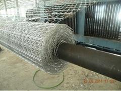 高锌量10*12cm石笼网价格