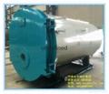 卧式燃油气蒸汽锅炉 3