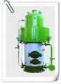 立式燃煤蒸汽 2