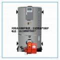 立式燃油氣蒸汽鍋爐