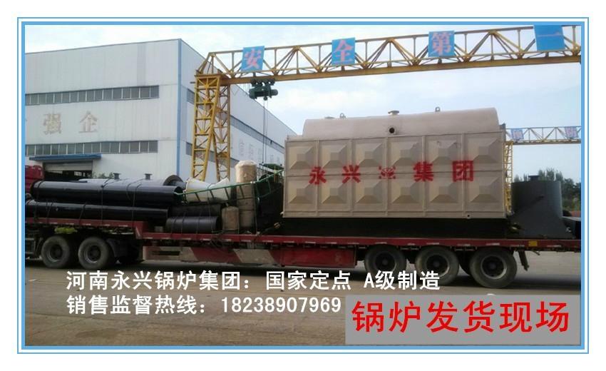 高效環保生物質蒸汽鍋爐 2