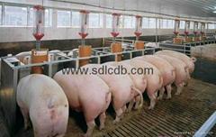 Runeng(swine fat emulsifier)