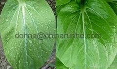 Agricultural Organosilicone Spray