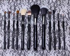 Hot selling 12pcs Sigma makeup brush set