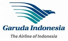 空运印度尼西亚 印尼航空