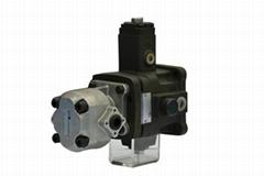 Hydraulic Variable Displacement Vane Pump (vane pump+gear pump)