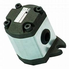 Hydraulic External Gear Pump- PS Series