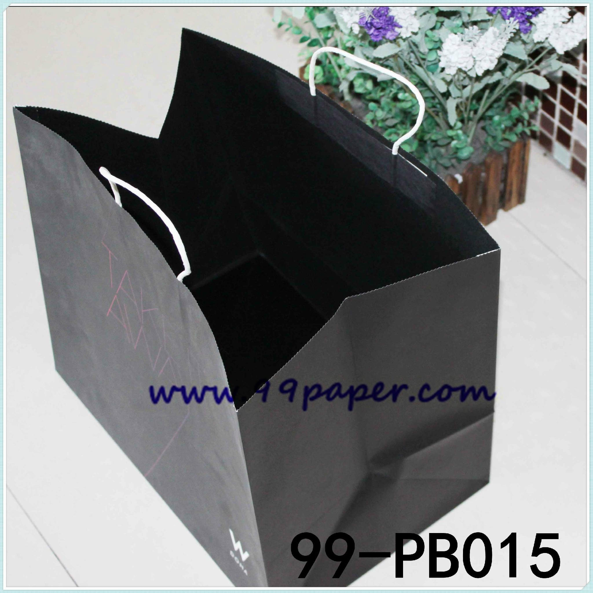 Deluxe paper shopping bags 3