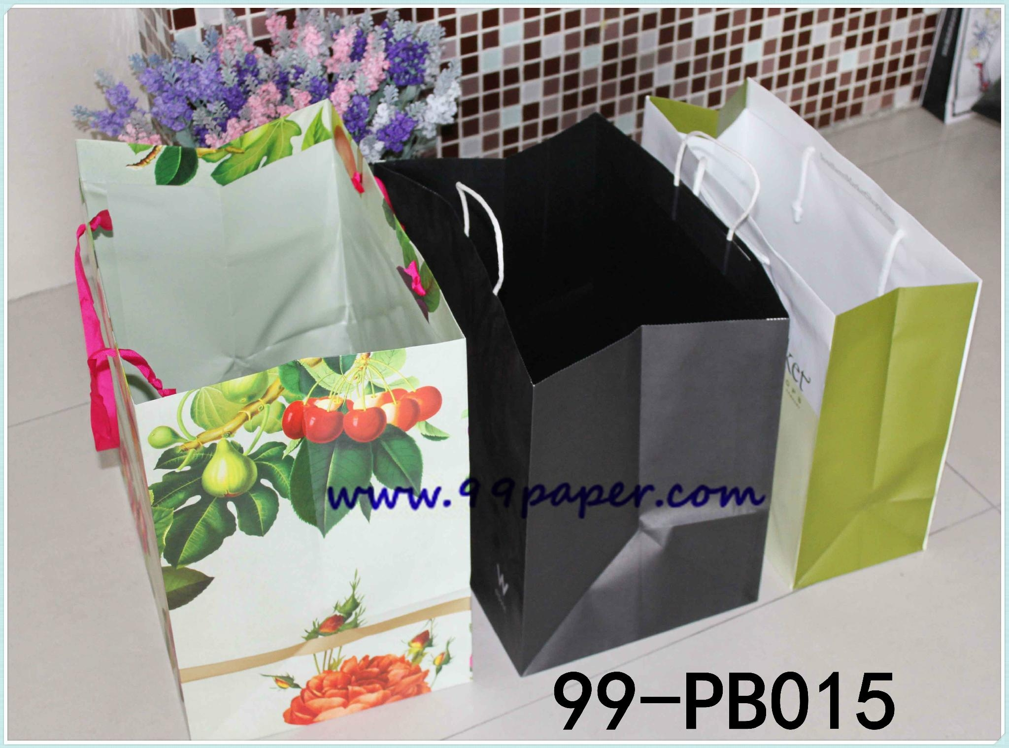 Deluxe paper shopping bags 2