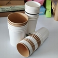Disposable soup cup with lid