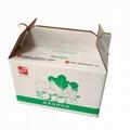 Fruit box, can keep fruit fresh