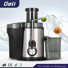 CE Fruit Juicer